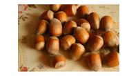 Kvalitetne sertifikovane vocne sadnice iz Rasadnika Antic
